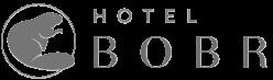 www.hotelbobr.cz